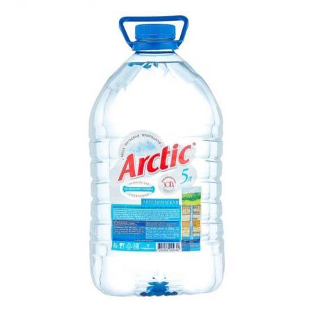 Arctic /Арктик 5л. (2 бут.) - основное фото
