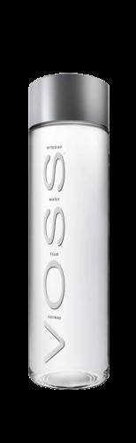 Voss / Восс 0,5 л. б/г (24 бут.) - основное фото