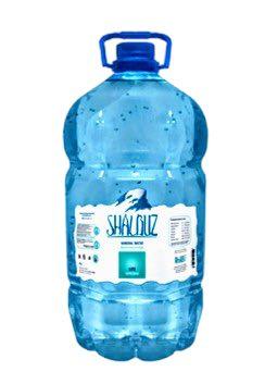 Shalbuz, 5л, негазированная, 2 шт - основное фото