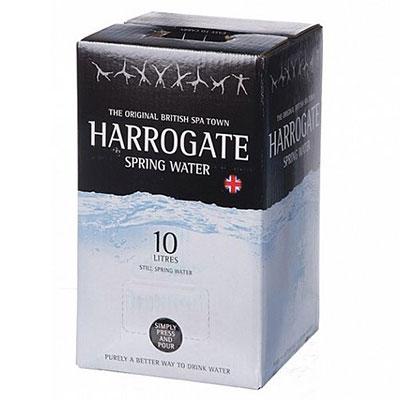 Harrogate 10 л. - основное фото
